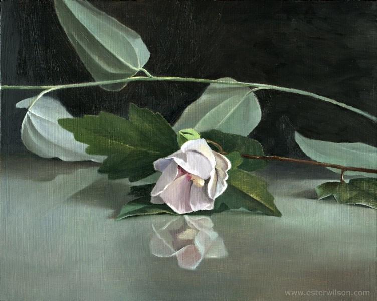 """""""Mirror Flower"""" original fine art by Ester Wilson"""