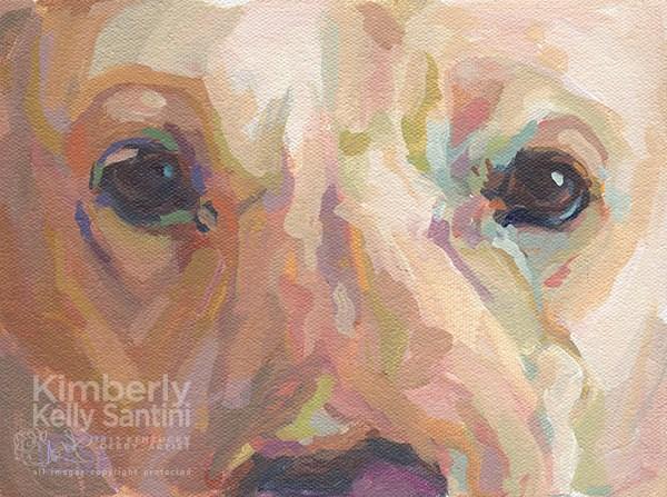 """Webster"" original fine art by Kimberly Santini"