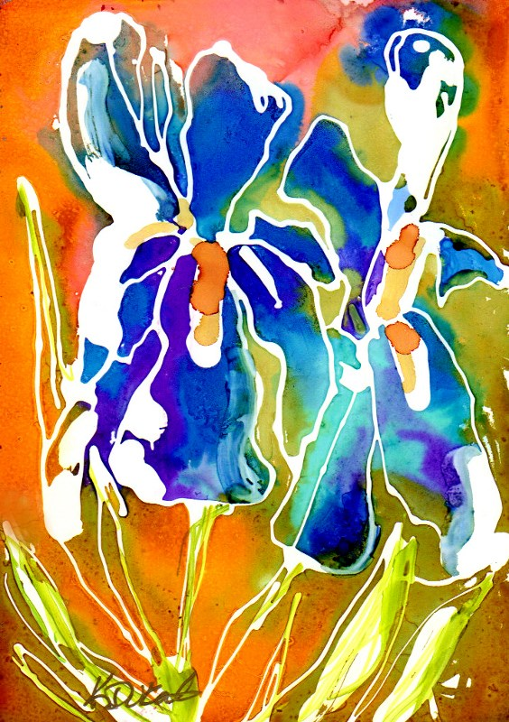 """Iris Glow"" original fine art by Kristen Dukat"