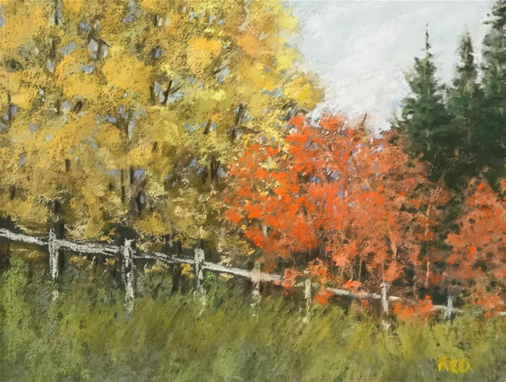 """trees along the fence"" original fine art by Betty Argiros"