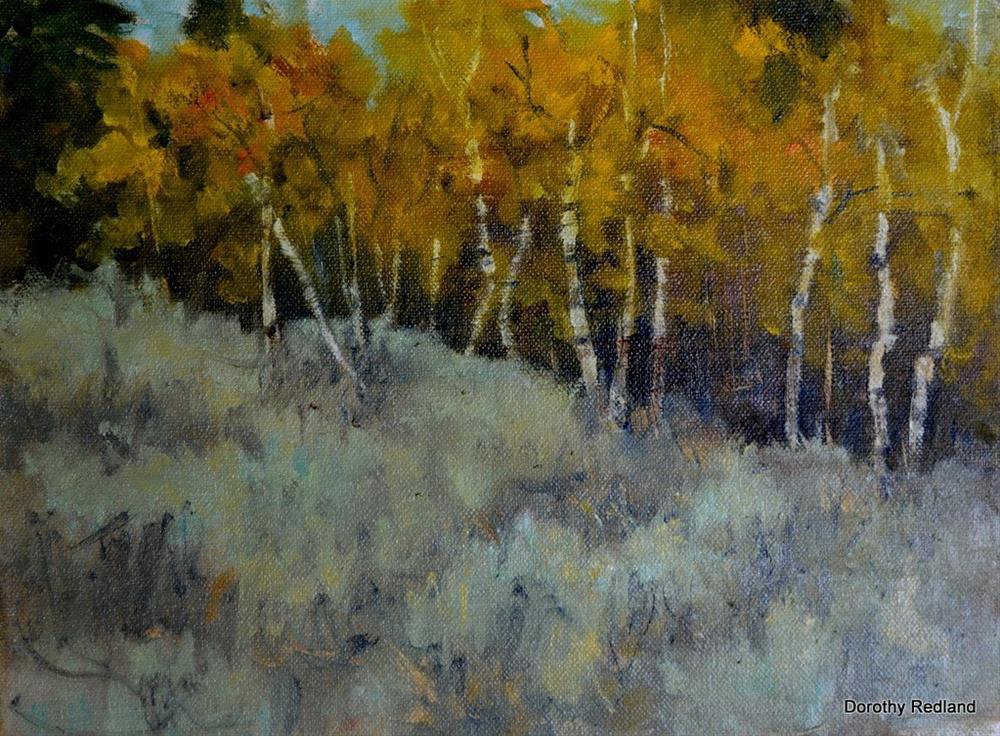"""Autumn Aspen"" original fine art by Dorothy Redland"