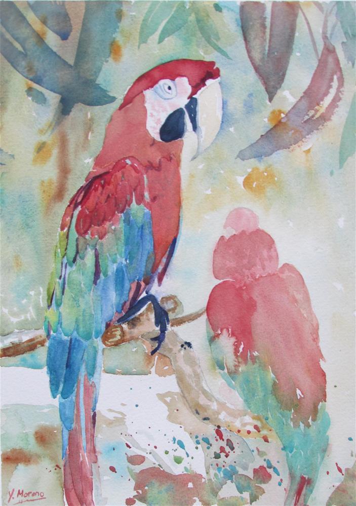 """""""Pretty Polly"""" original fine art by Yolanda Moreno"""