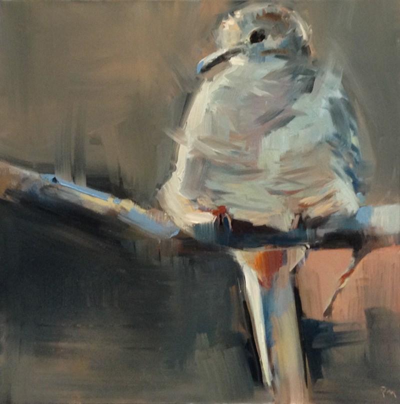 """The Inky Inca Dove"" original fine art by Patti McNutt"
