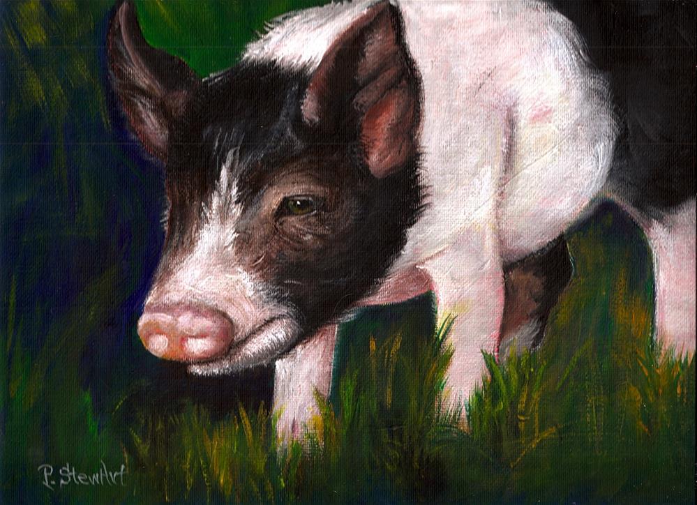 """9x12 Acrylic Pig a potbellied porker piglet pet portrait by Penny"" original fine art by Penny Lee StewArt"