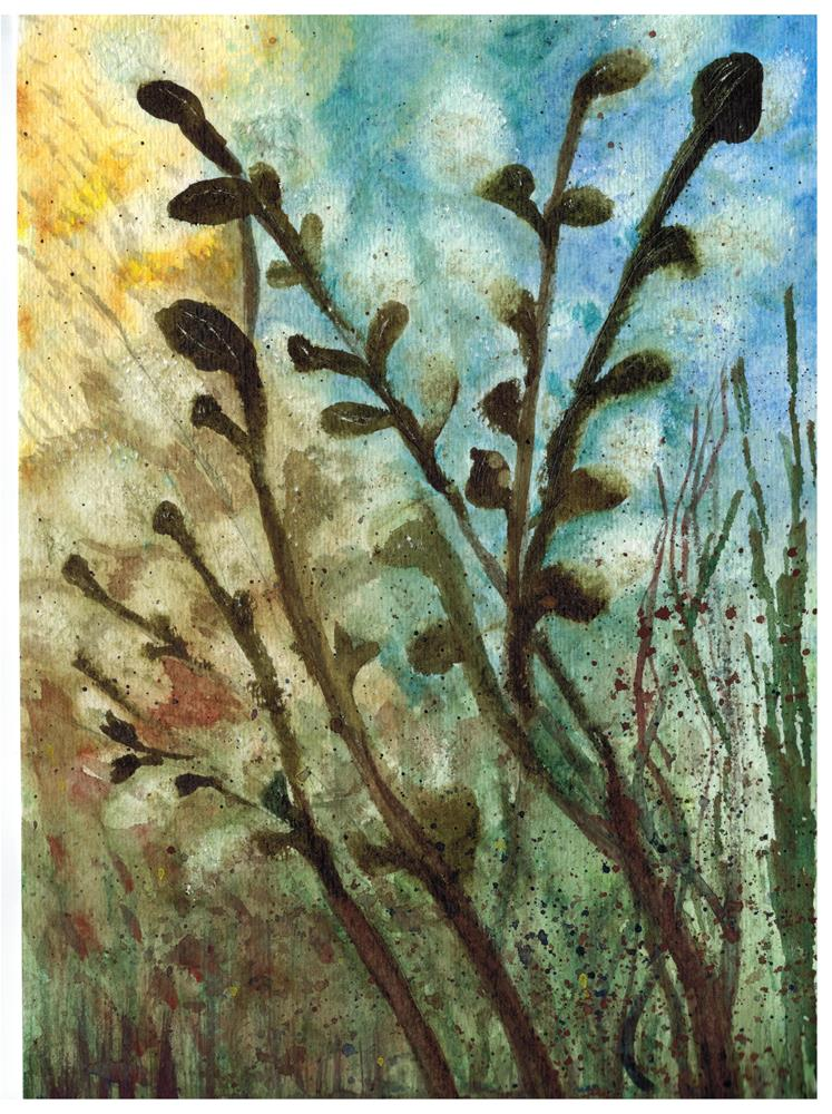 """""""Willow"""" original fine art by Donna Vieth"""