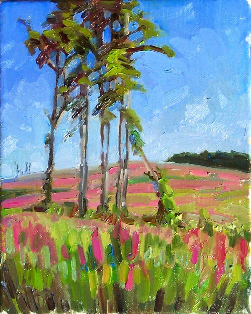"""Fireweed Clearcut,landscape,oil on canvas,10x8,price$250"" original fine art by Joy Olney"