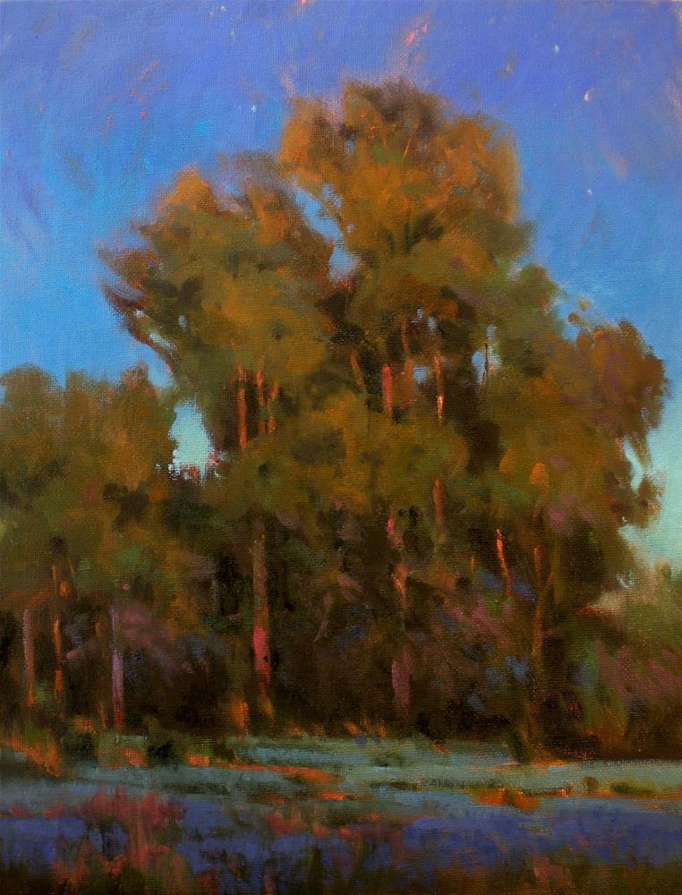 """Twilight"" original fine art by David Forks"