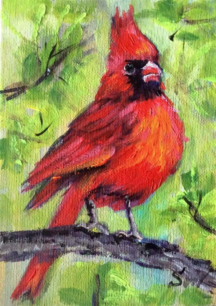 """""""Red cardinal"""" original fine art by Sonia von Walter"""