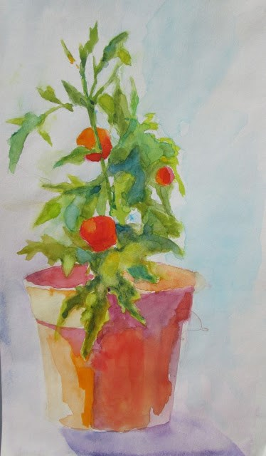 """Last Tomatoes Summer's end.   6x12 Watercolor of tomatoes"" original fine art by Mary Sheehan Winn"