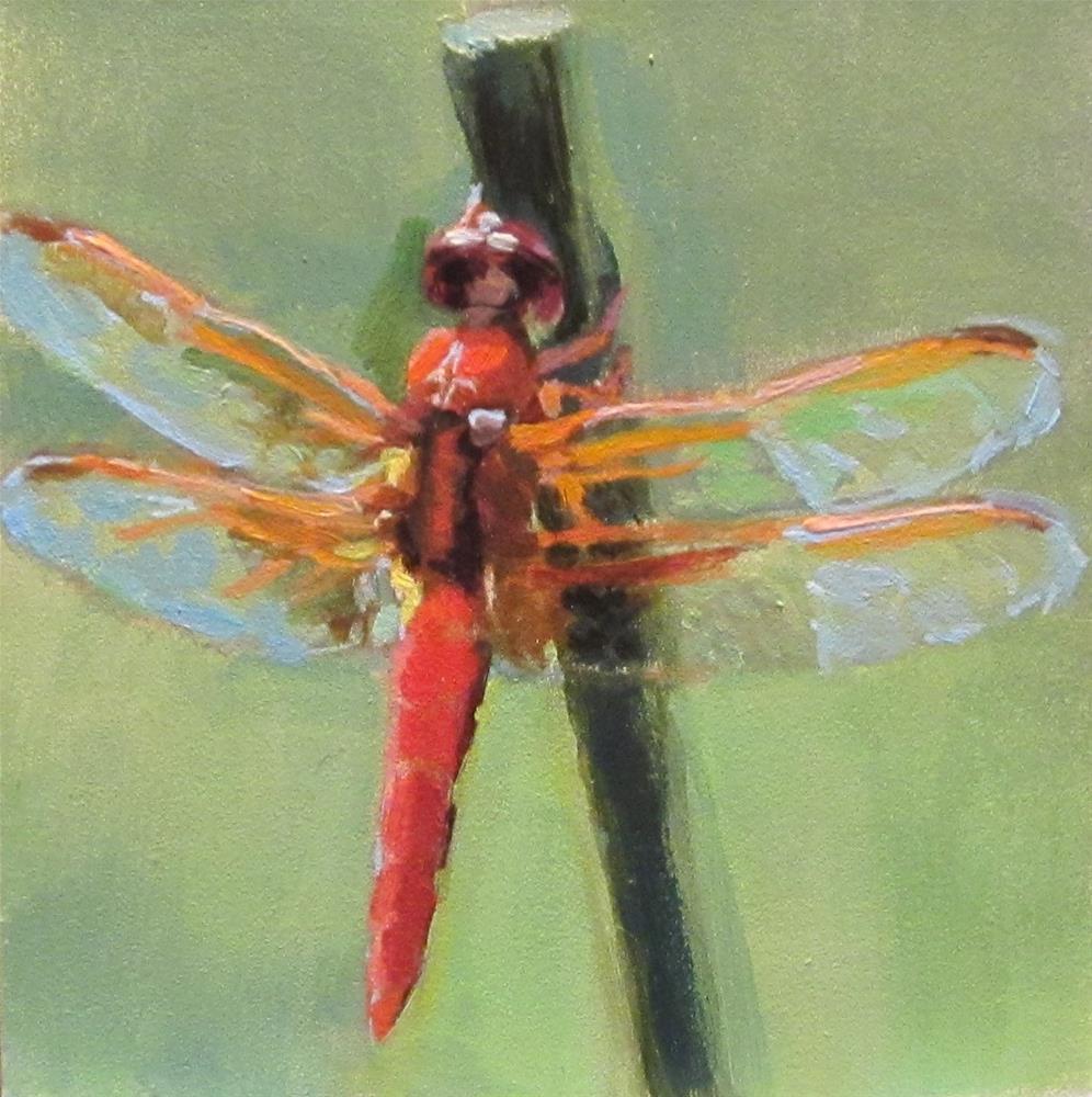 """Dragonfly #2"" original fine art by Kaethe Bealer"