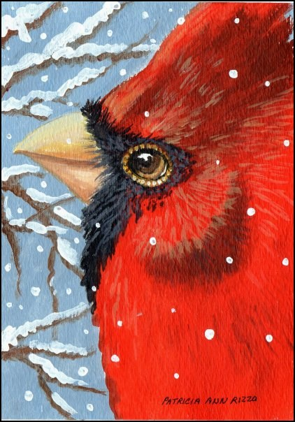 """Mr. Cardinal"" original fine art by Patricia Ann Rizzo"