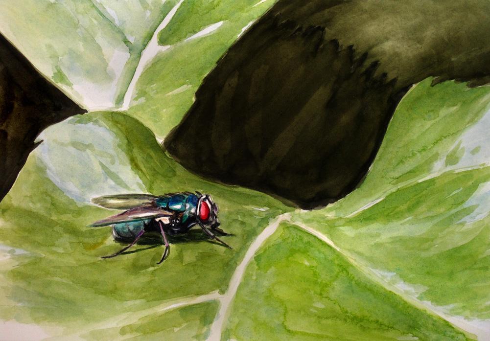 """""""Fly"""" original fine art by Ulrike Miesen-Schuermann"""