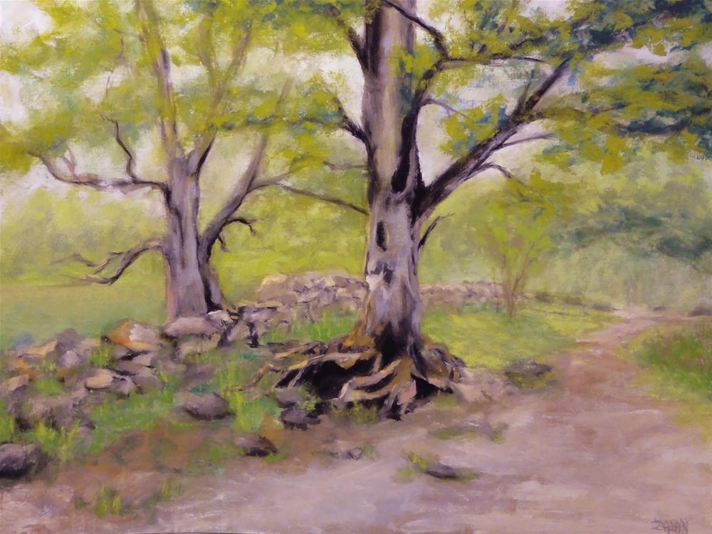 """English Oaks II"" original fine art by Dalan Wells"