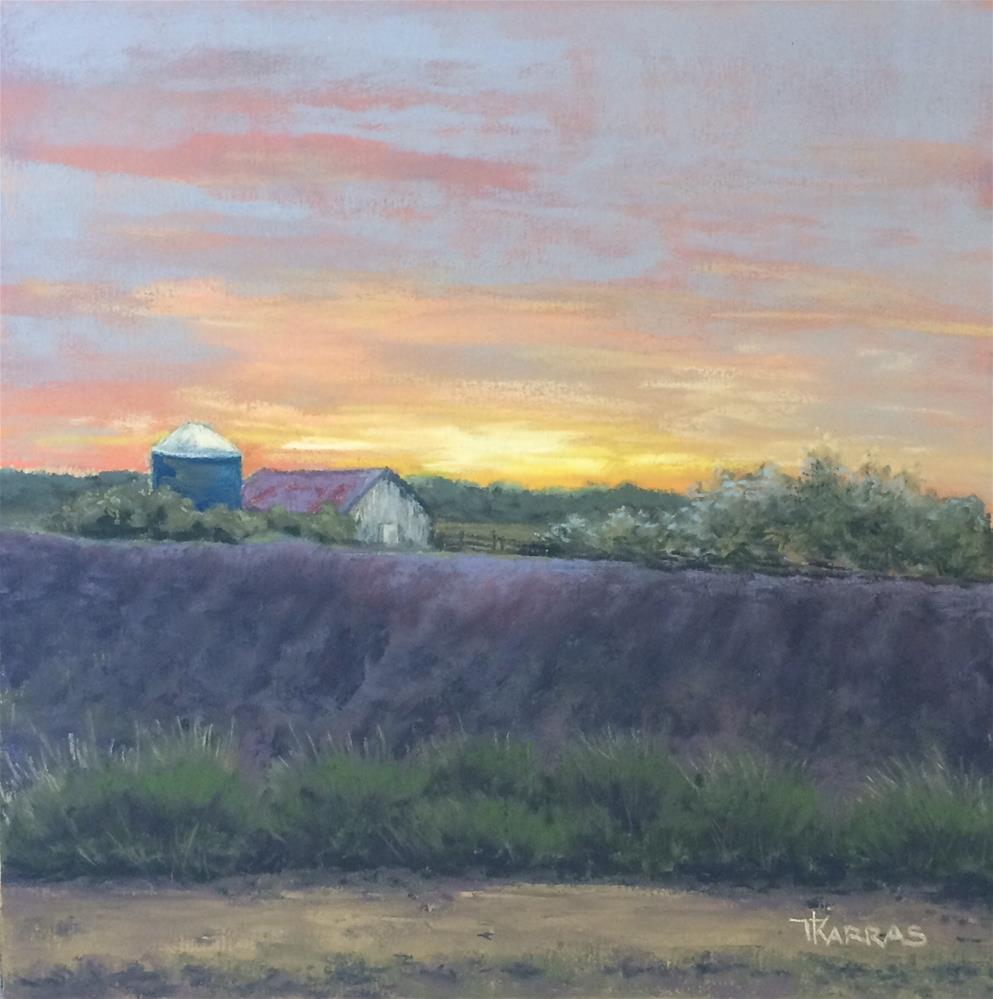 """Lakeside Lavender Farm"" original fine art by Christina Karras"