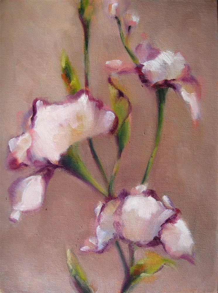 """Irises Unfurled"" original fine art by Maresa Lilley"