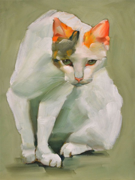 """The Cat"" original fine art by Cheryl Wilson"