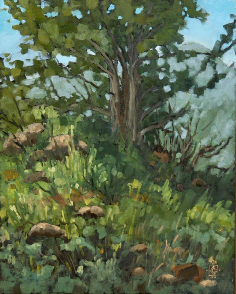 """""""Sturdy Cedar"""" original fine art by Carol Granger"""