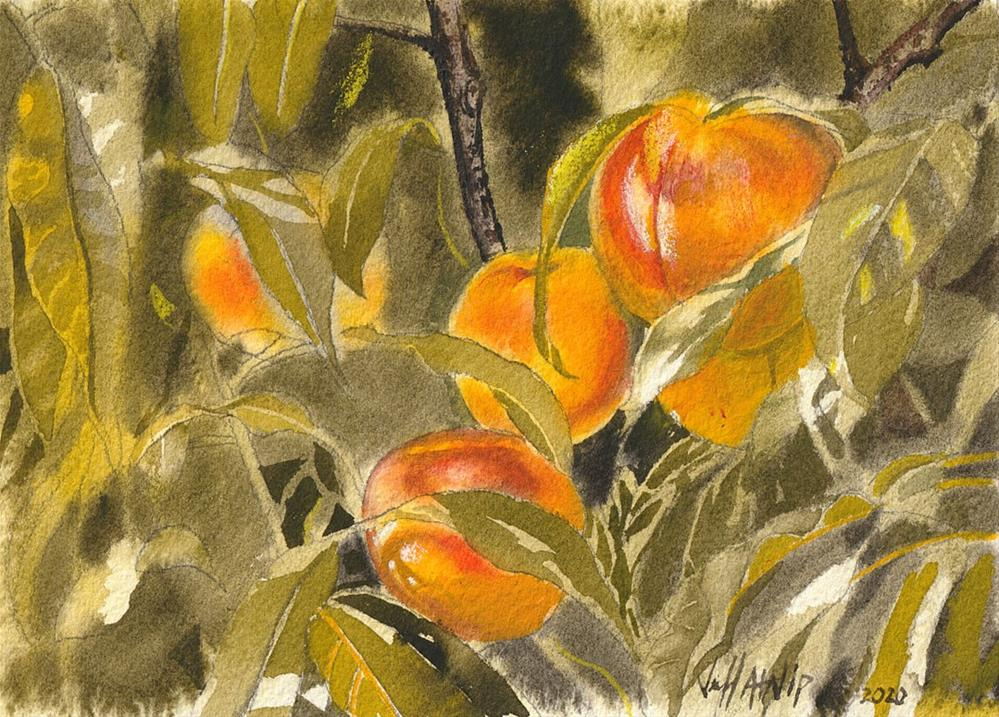 """Georgia Peaches"" original fine art by Jeff Atnip"