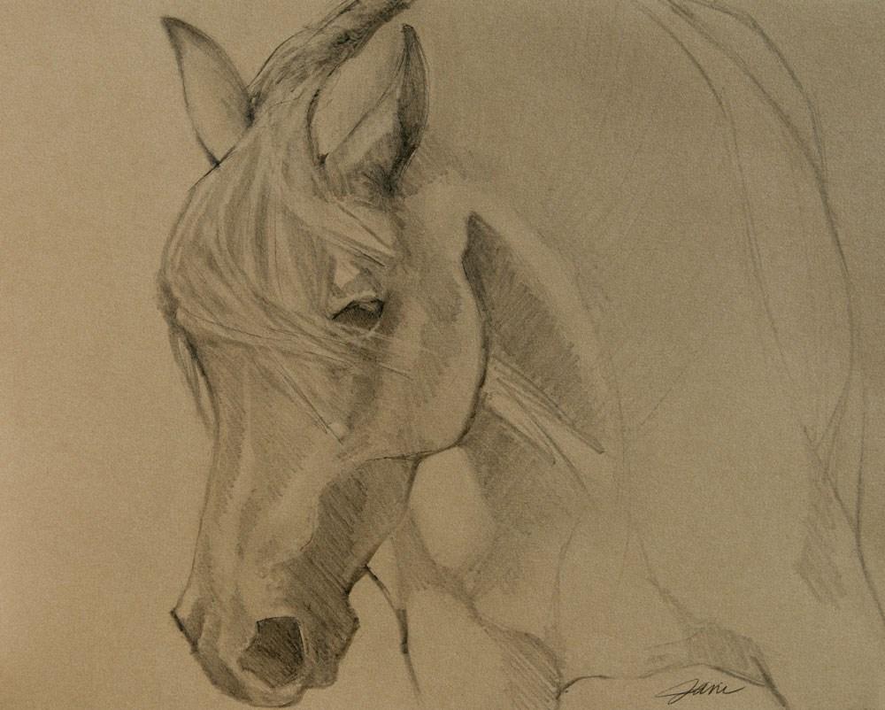 """Mustang Morning"" original fine art by Jani Freimann"