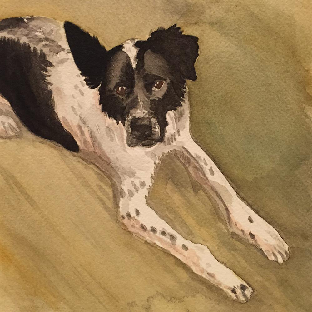 """Finley, from above"" original fine art by Cindy McDonough"