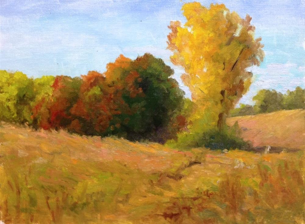 """Autumn Color"" original fine art by Judith Anderson"