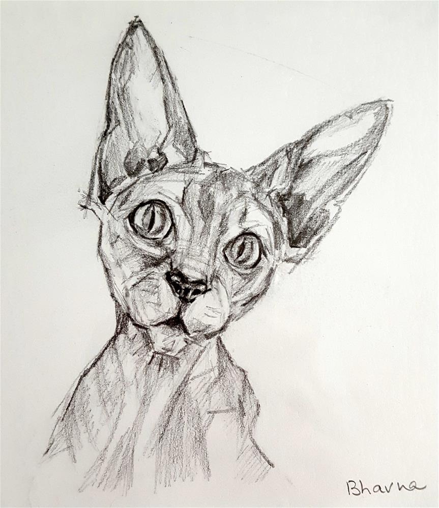 """Cat Portrait - Framed Illustration"" original fine art by Bhavna Misra"