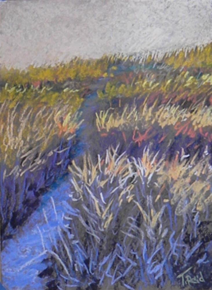 """""""Light on the trail"""" original fine art by Toby Reid"""
