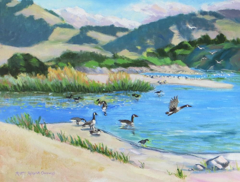 """Canada Geese at Carmel River"" original fine art by Rhett Regina Owings"