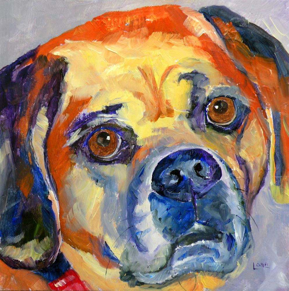 """ARCHIE 13/100 OF 100 PET PORTRAITS IN 100 DAYS © SAUNDRA LANE GALLOWAY"" original fine art by Saundra Lane Galloway"