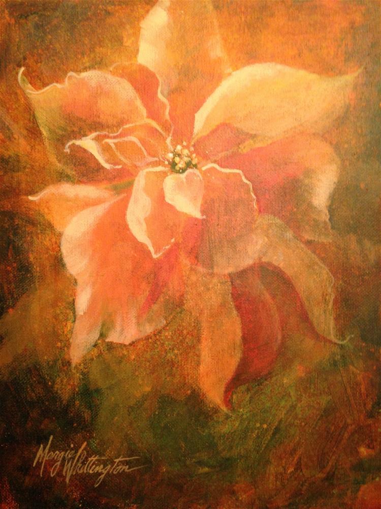 """Peach Poinsettia"" original fine art by Margie Whittington"