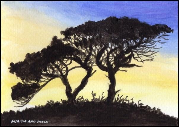 """""""Trees in Silhouette"""" original fine art by Patricia Ann Rizzo"""