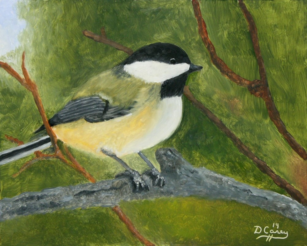 """""""Avian Series - Chickadee 001a 8x10 oil on wood panel - Dave Casey - TheDailyPainter"""" original fine art by Dave Casey"""