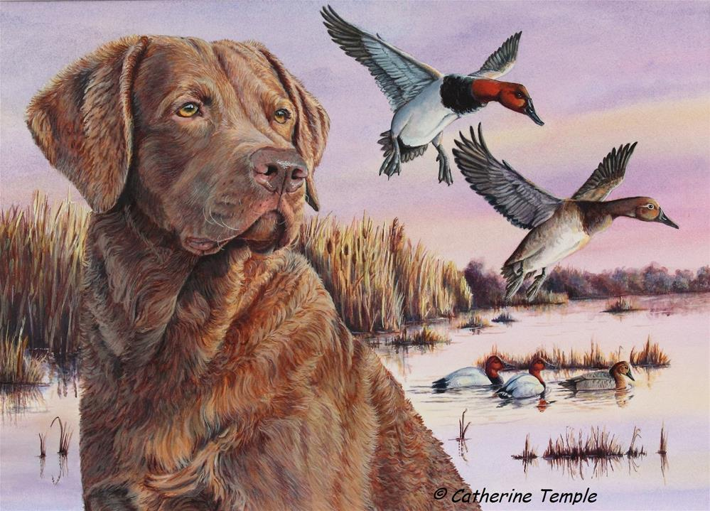 """2017 Delaware Duck Stamp"" original fine art by Catherine Temple"