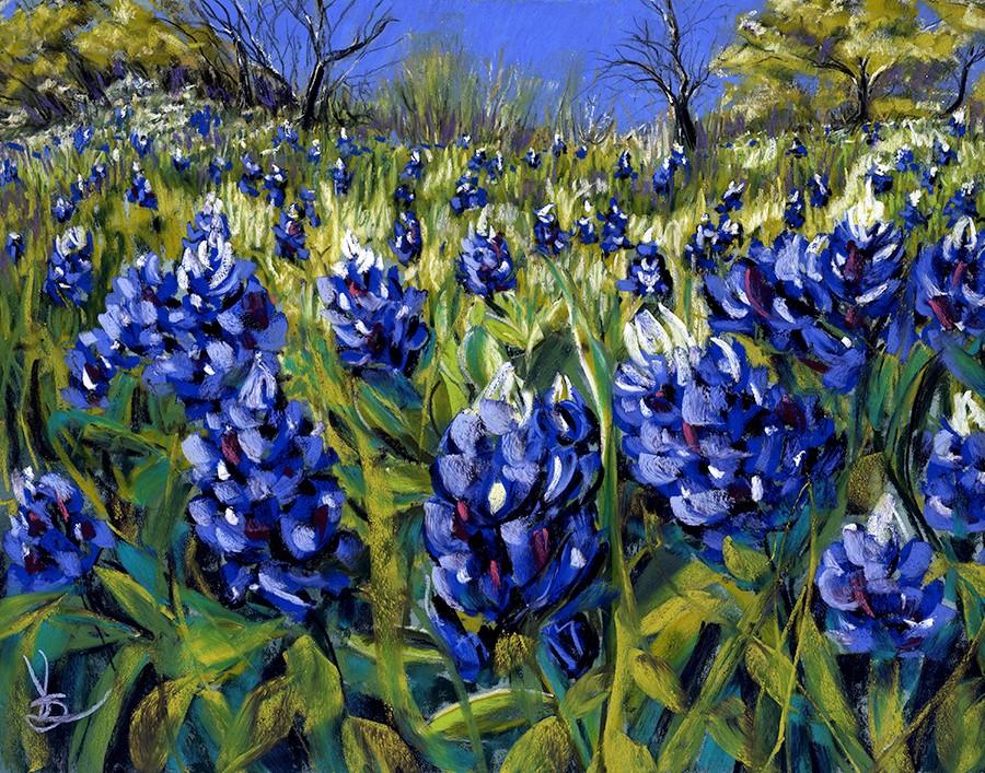 """Bluebonnets"" original fine art by Valorie Sams"
