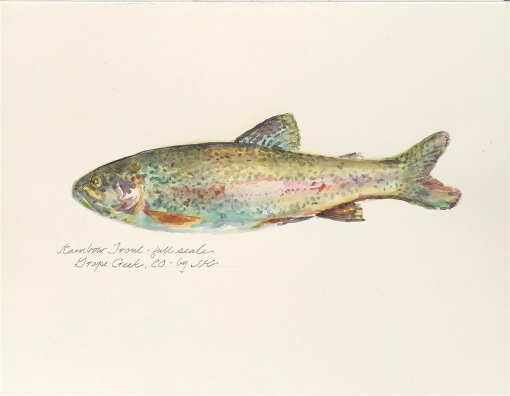 """Rainbow Trout"" original fine art by Jean Krueger"