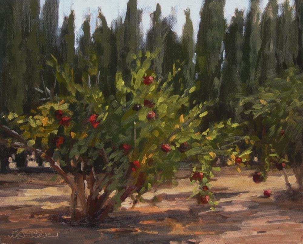 """Pomegranate Field Study"" original fine art by Karen Werner"