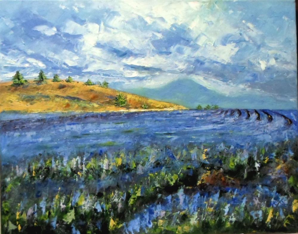 """""""16 x 20 inch oil Lavender Fields #2"""" original fine art by Linda Yurgensen"""