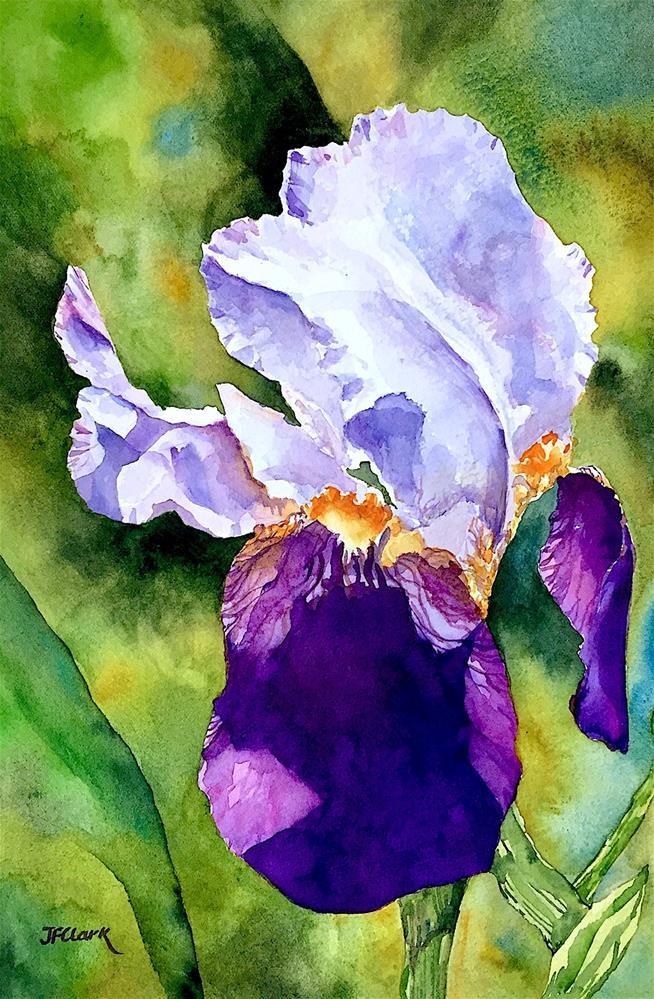 """Garden Royalty, study"" original fine art by Judith Freeman Clark"