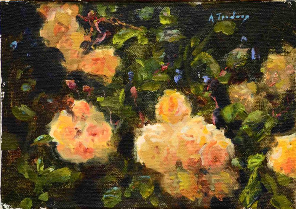 """Apricot Rose Bush #2"" original fine art by alicia tredway"