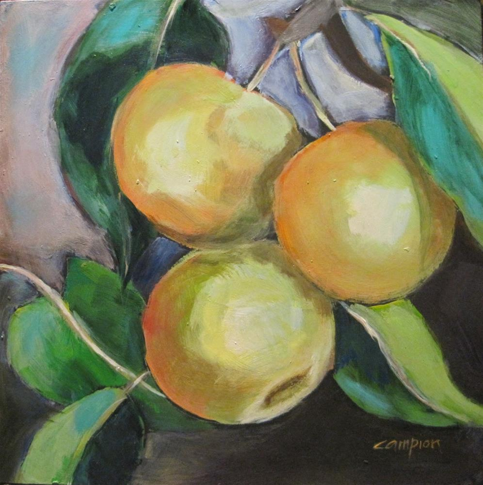 """""""491 Ripe For The Picking"""" original fine art by Diane Campion"""