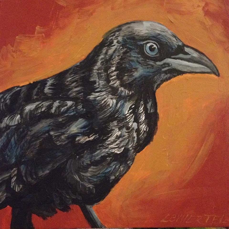 """Young Crow"" original fine art by Lisa Wiertel"