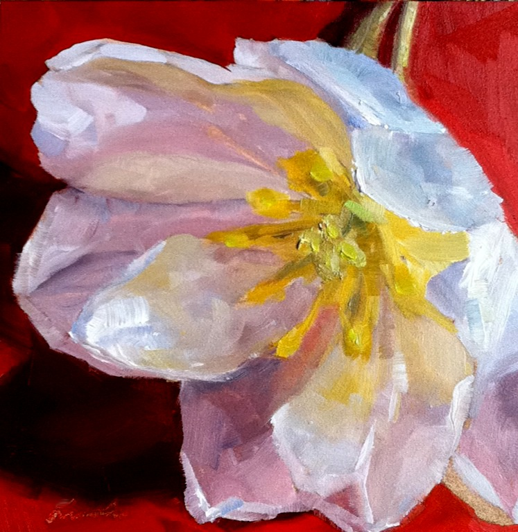 """Tulip Tango"" original fine art by Kristen Dukat"
