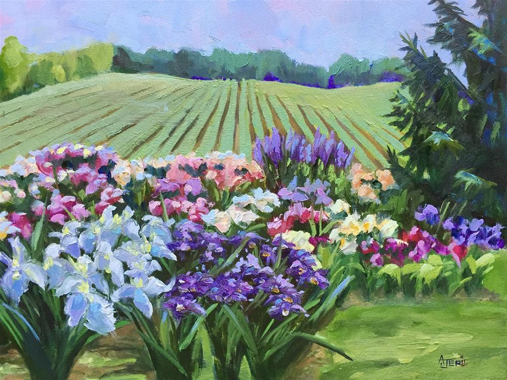 """Flower Farm"" original fine art by Andrea Jeris"