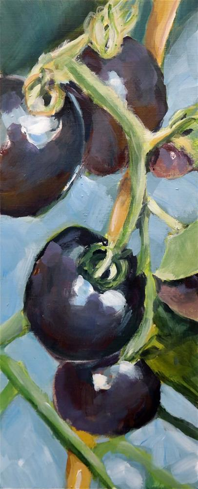 """2204 Black Tomatos"" original fine art by Dietmar Stiller"