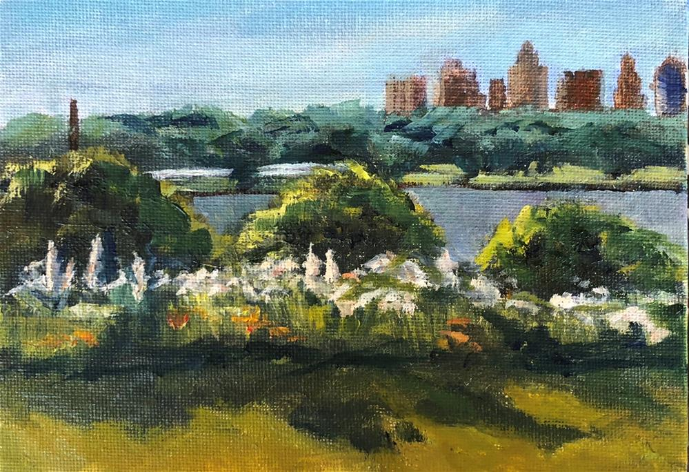 """White Rock View of DT Dallas"" original fine art by Renee Robison"