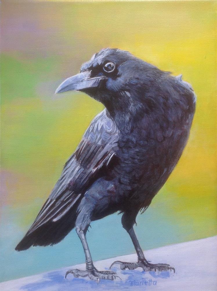 """ Crow "" original fine art by Marietta Modl"