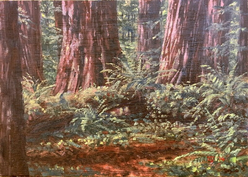 """C1567 Morning among the Giants  (In the Stout Grove, Jedidiah SmithRedwood State Park, near Crescent City, CA)"" original fine art by Steven Thor Johanneson"