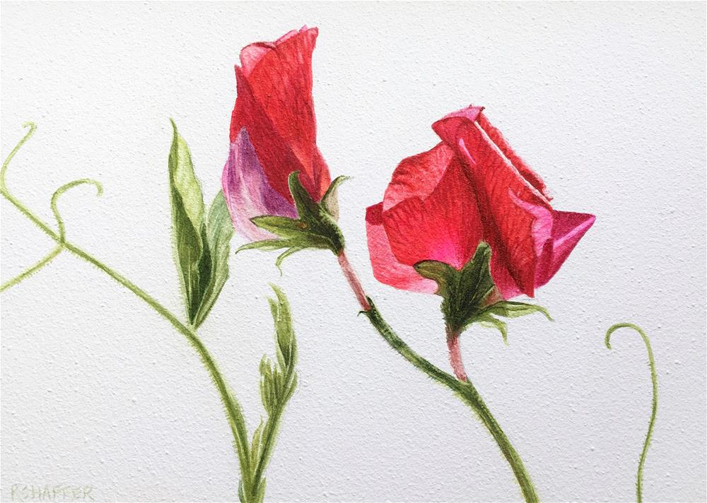"""Sweet Peas No. 2"" original fine art by Renay Shaffer"