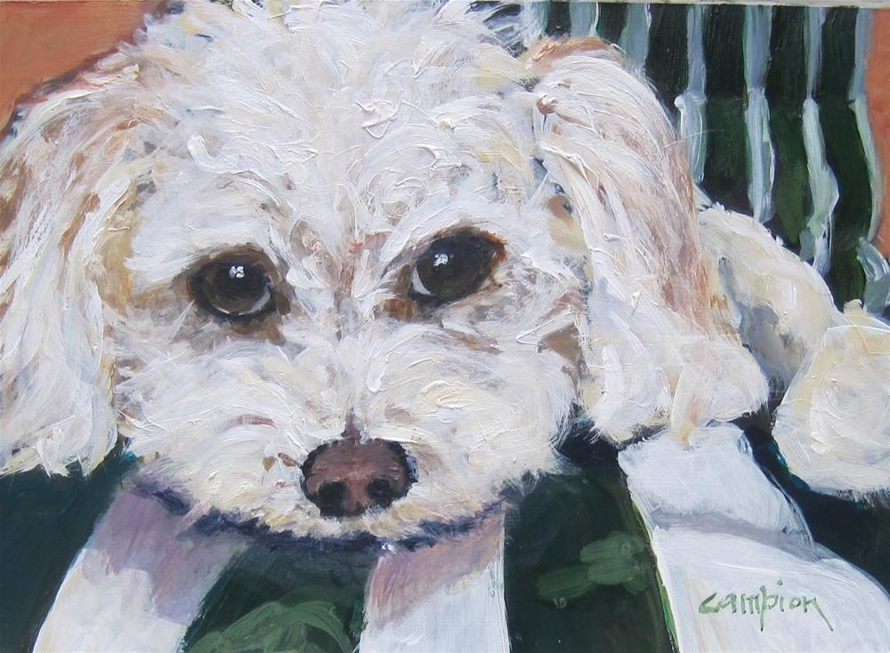 """110.  Oliver"" original fine art by Diane Campion"
