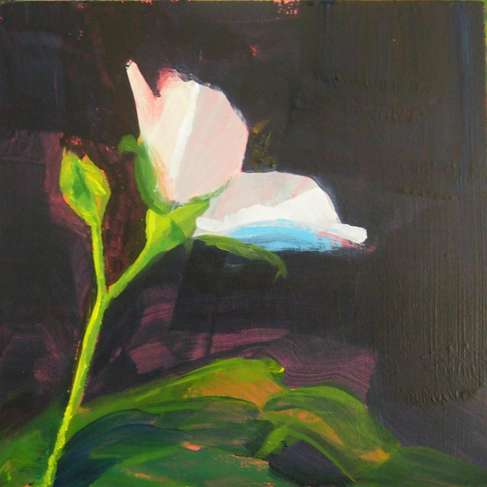"""small white (flower?)"" original fine art by Cindy McDonough"